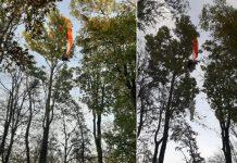Video+foto: Paraglajdistovi uviaznutému na strome pod Slepým vrchom pomáhali hasiči aj vrtuľník